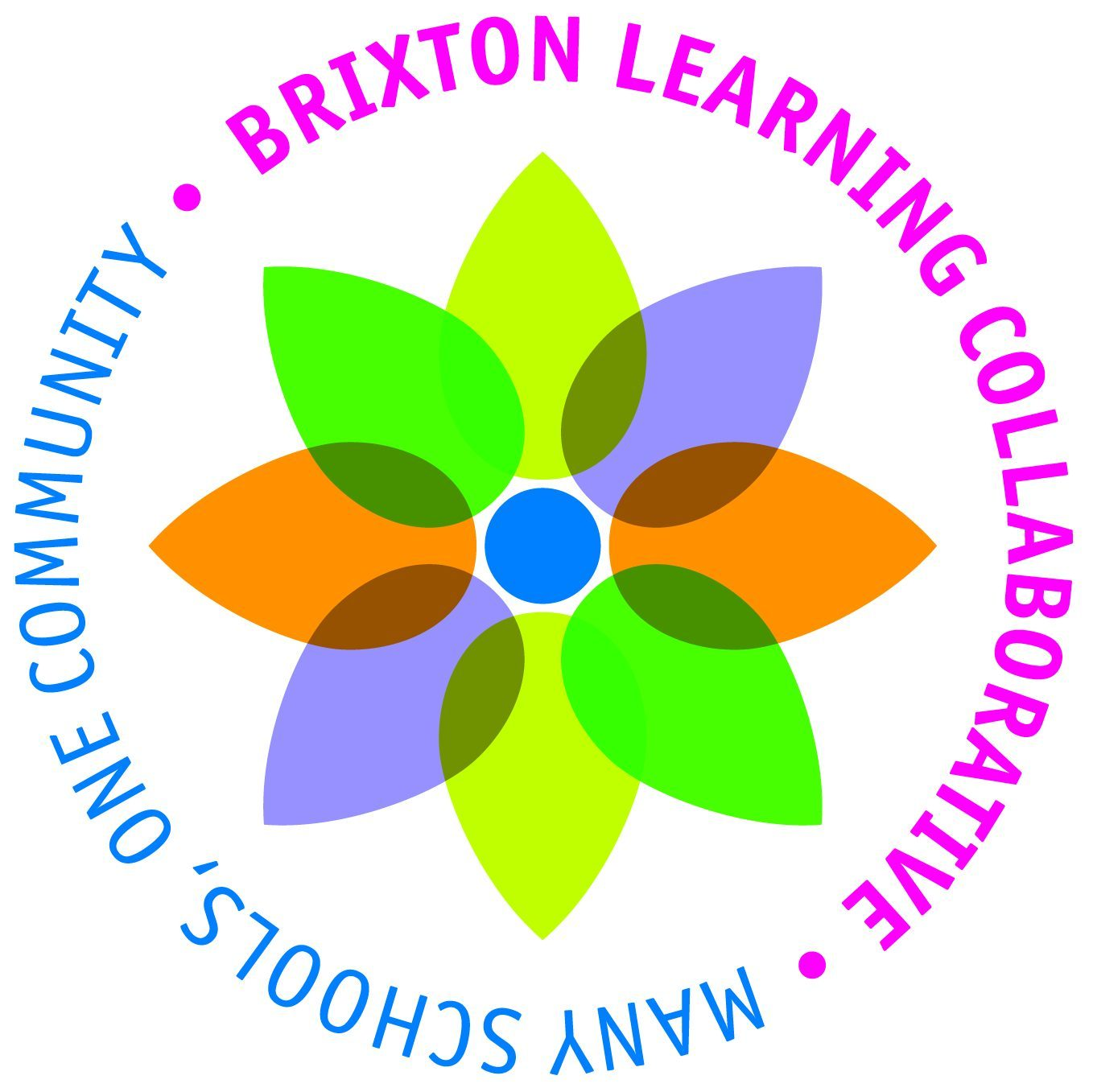 The Brixton Learning Collaborative